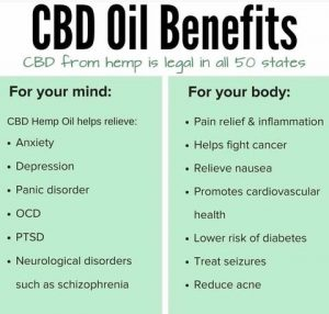 CBD-HEMP-OIL-UK_large